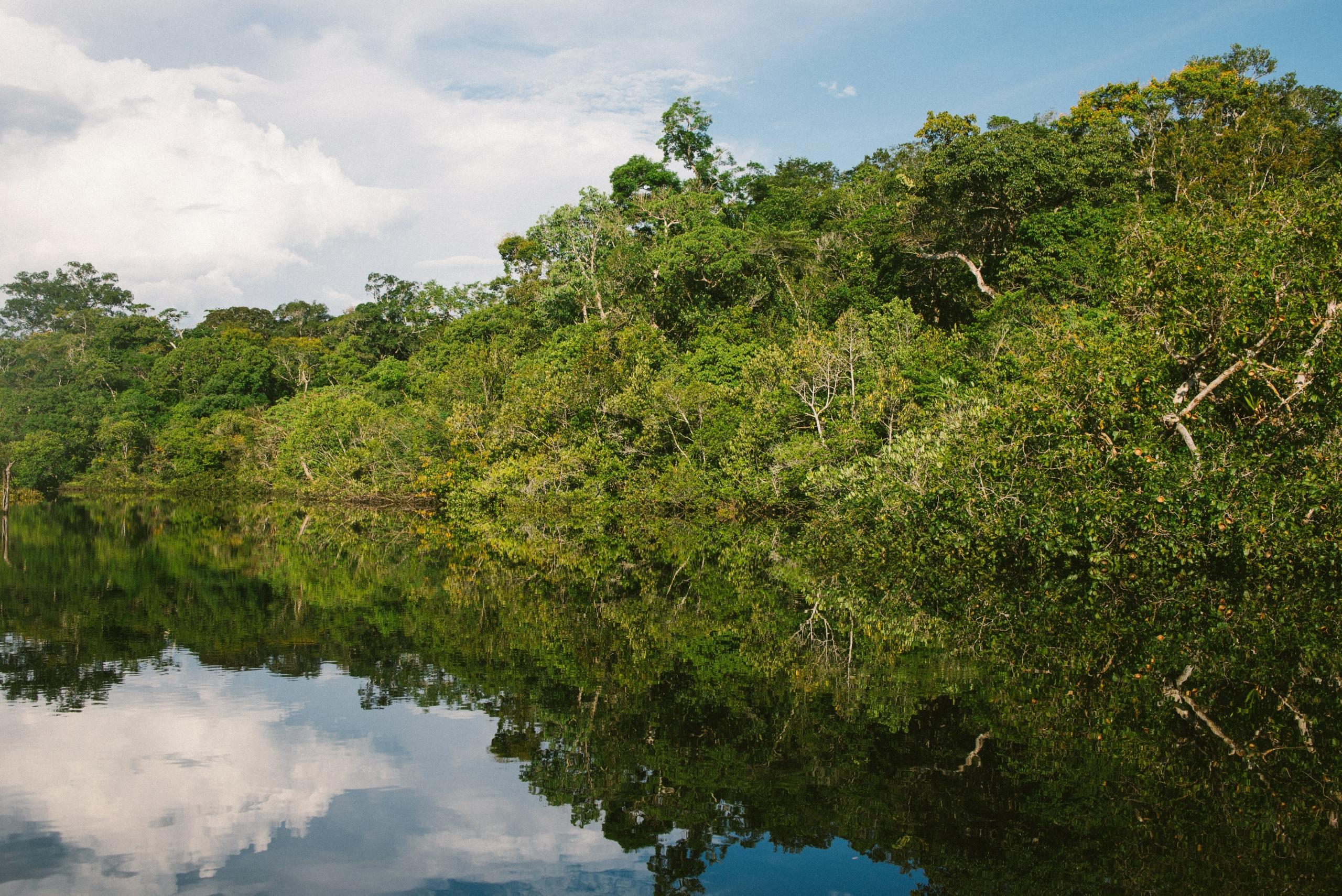 Amazonia – czy znasz jej tajemnice?
